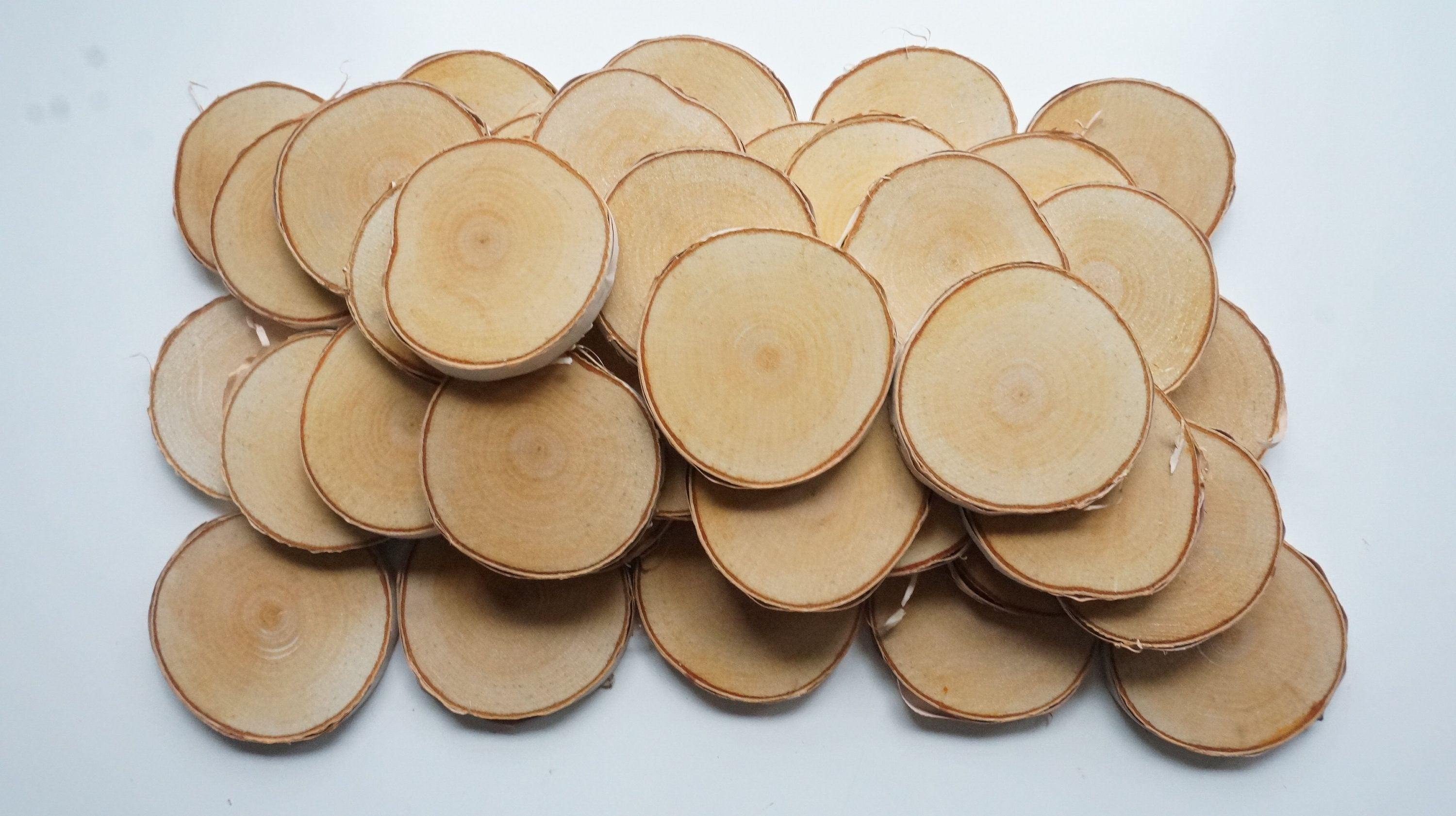 40 Birch Wood Slices 2 5 8 3 Inch Wooden Wedding Favors Ornament Blanks Log Discs Pyrography Supply Wedding Favors Wood Slices Wooden Wedding