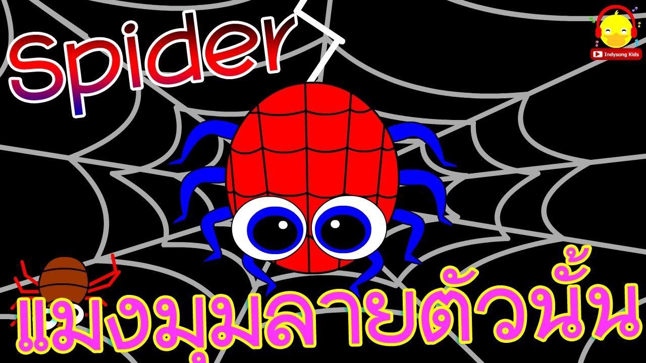 เพลงแมงม มลาย อน บาล แมงม มลายต วน น Itsy Bitsy Spider เพลงเด ก In การ ต น เพลง อน บาล