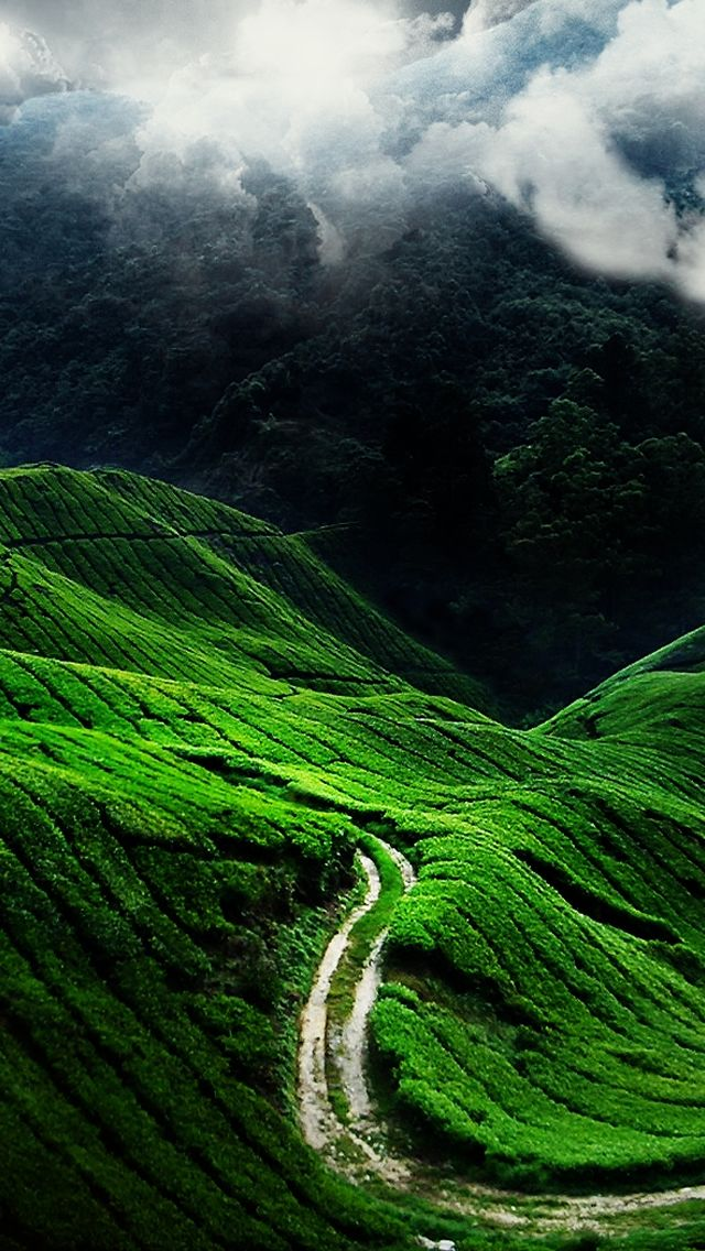 Green Mountains Iphone 5 Wallpaper Ilikewallpaper Com 640x1136 Pixels