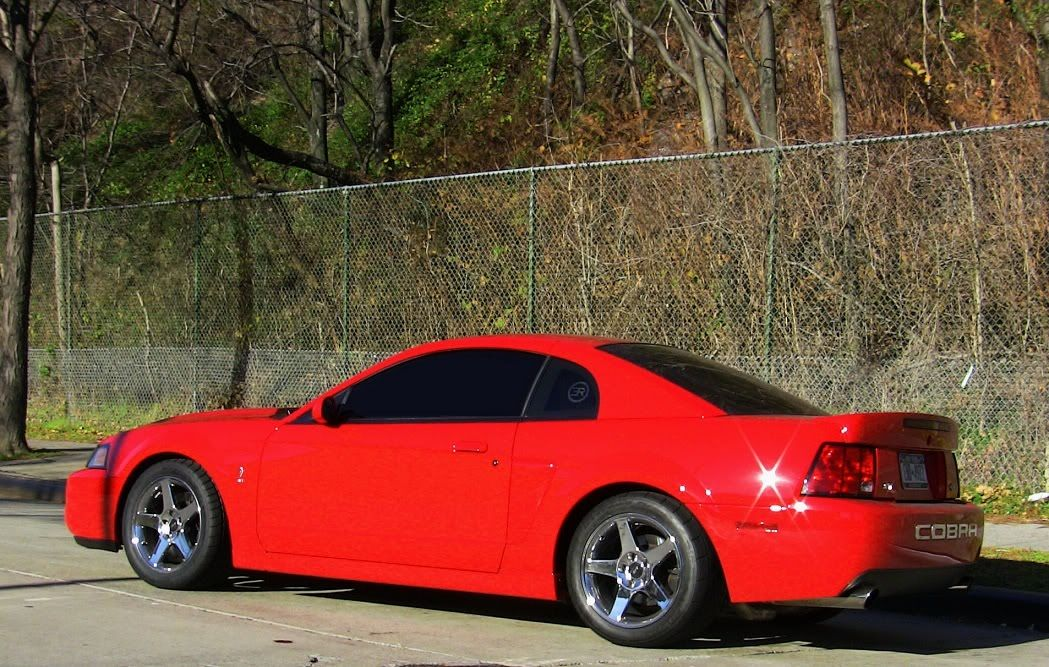 F S 2003 Torch Red Cobra Sold New York Mustangs Forums Mustang Cobra Ford Mustang Cobra Sn95 Mustang