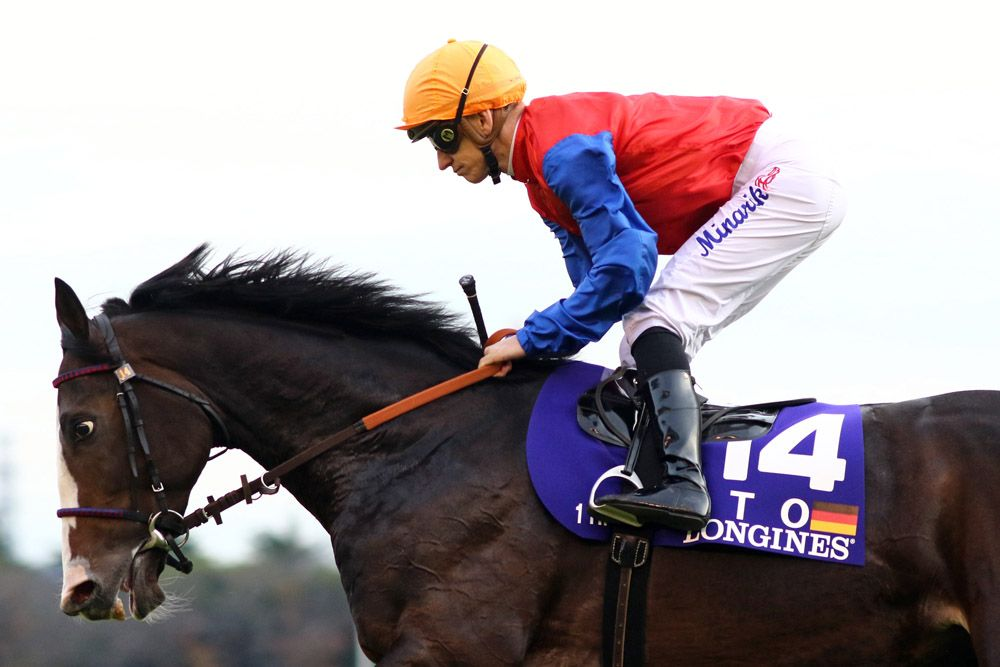 Bragging rights among Germany's middle-distance runners are up for grabs at present, and Sunday's G1 Grosser Dallmayr-Preis at Munich offers the opportunity for a clear leader to emerge. Ito (Ger) (Adlerflug {Ger}) would have enjoyed …