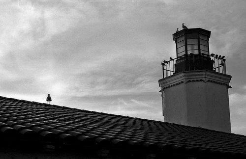 Echo Park, California – 35mm Film