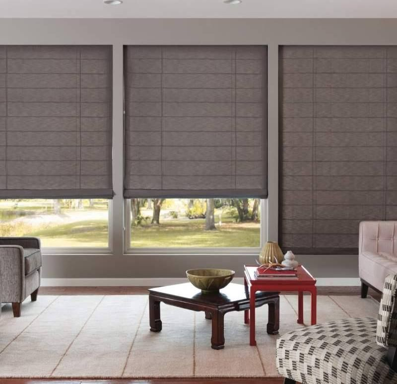 Remote Control Blinds For Glass Wall Living Room Blinds Blinds For Windows Blinds Design