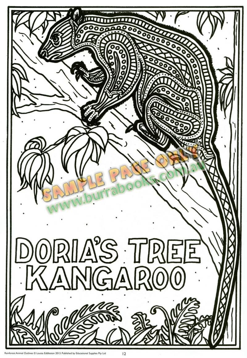 rainforest animal outlines - Animal Outlines For Colouring