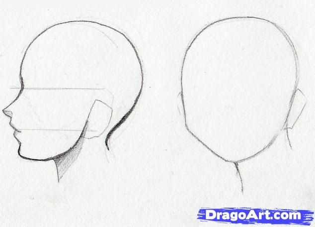 How To Sketch Anime Girls Step 4 Anime Face Shapes Anime Head Shapes Anime Face Drawing