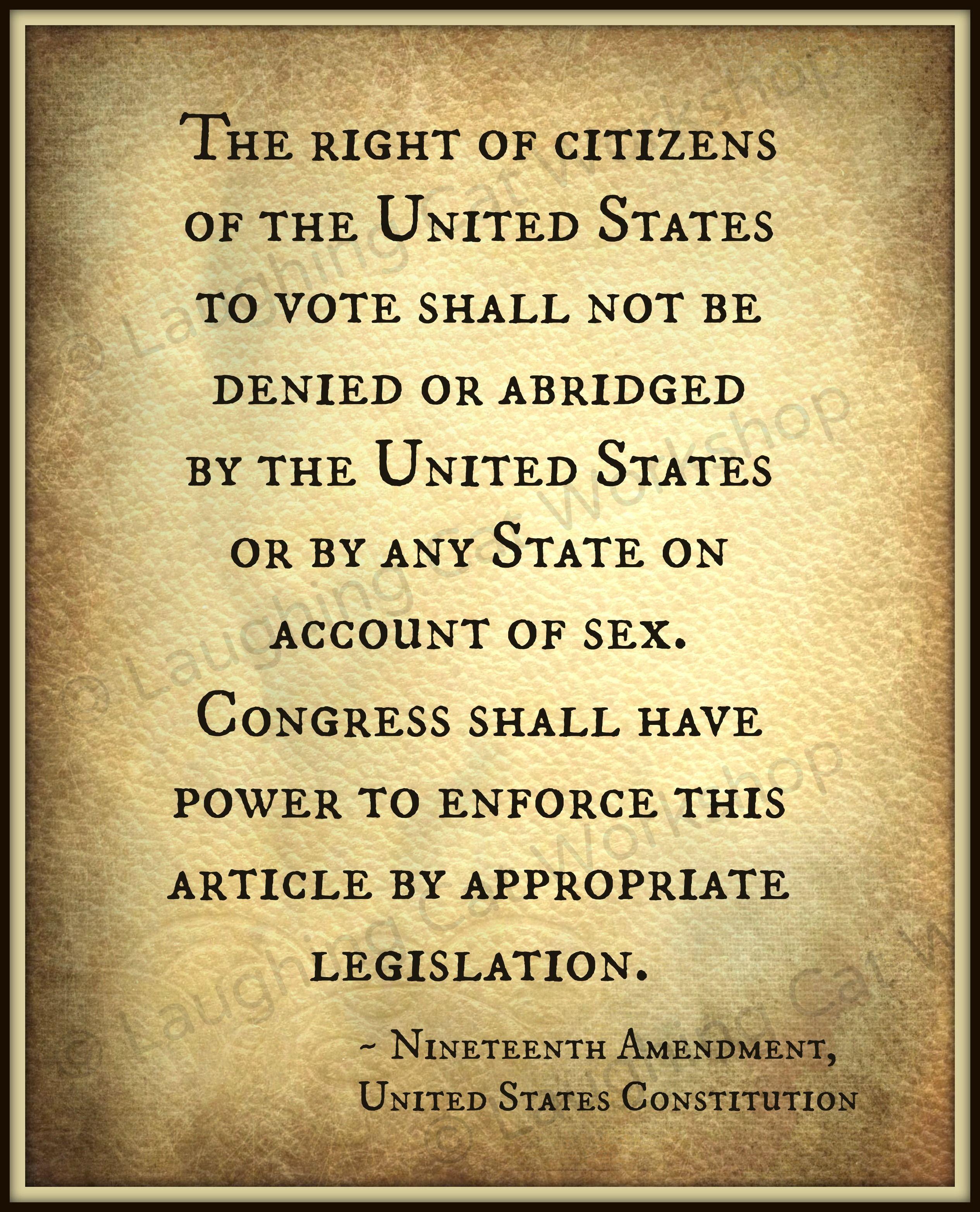19th Amendment United States Constitution Art Print