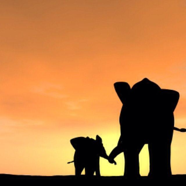 elephant silhouettes �� � pinteres�