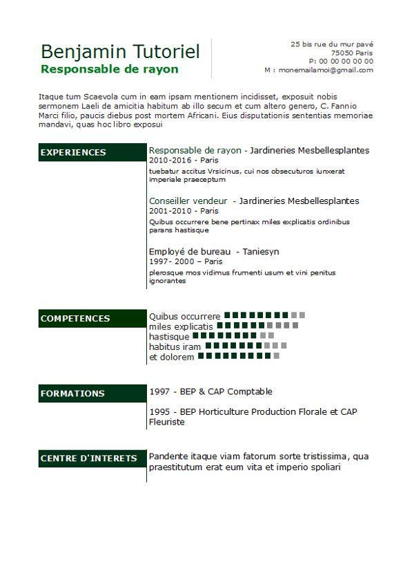 pole emploi profil de competence cv