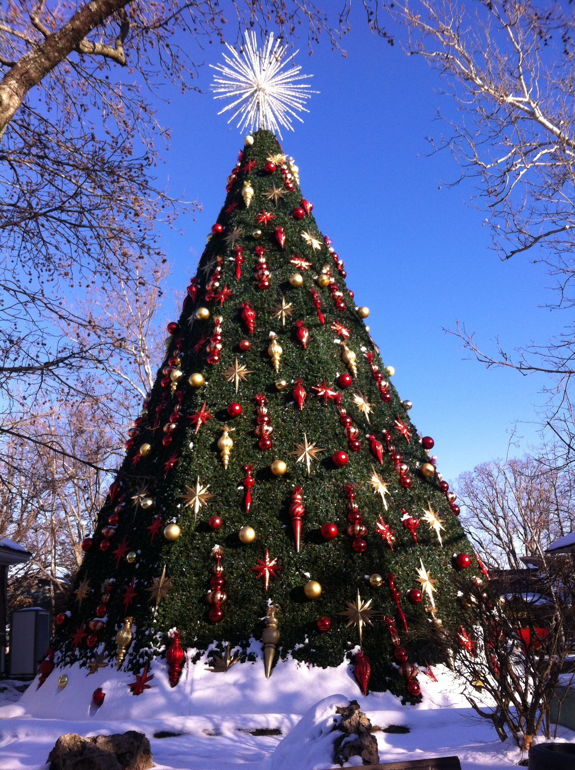 5 Story Christmas Tree At Silverdollarcity Silver Dollar City Old Time Christmas Dogwood Canyon