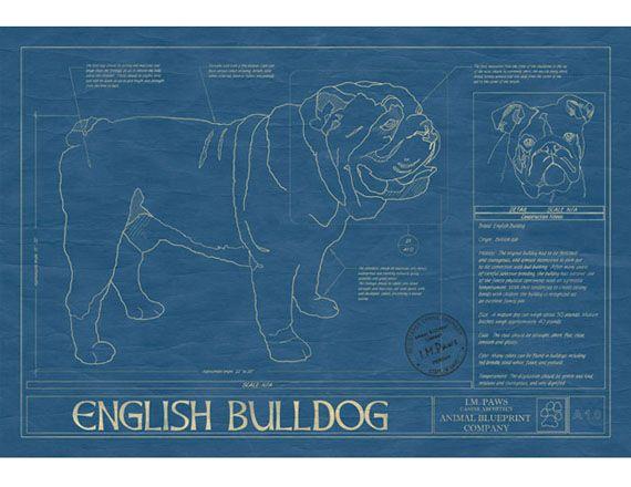 For Pet Architects: Animal Blueprints