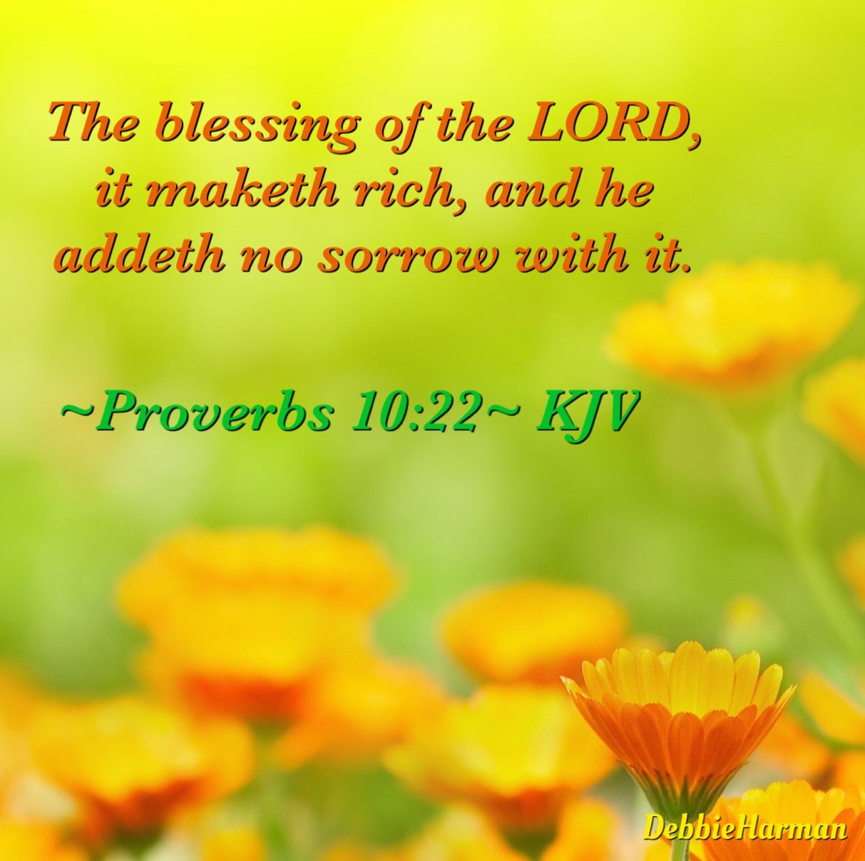 Proverbs 10:22~ KJV. The blessing of the LORD, it maketh rich, and he addeth no sorrow with it.   I love the lord,  Proverbs 10, Greatest commandment