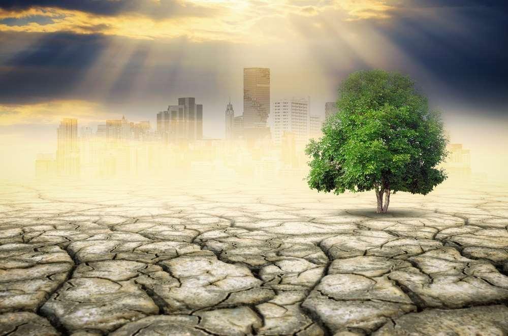 Feeling the heat Banks eye climate change risk https