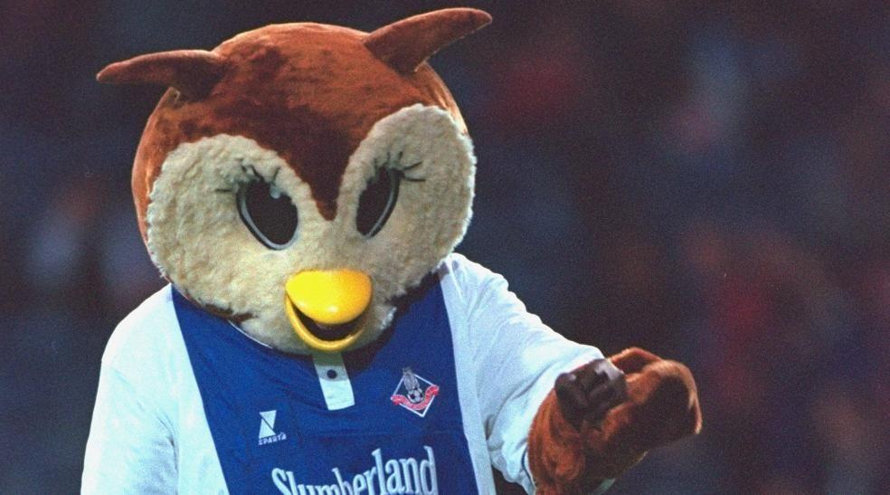 Chaddy the Owl (Oldham)