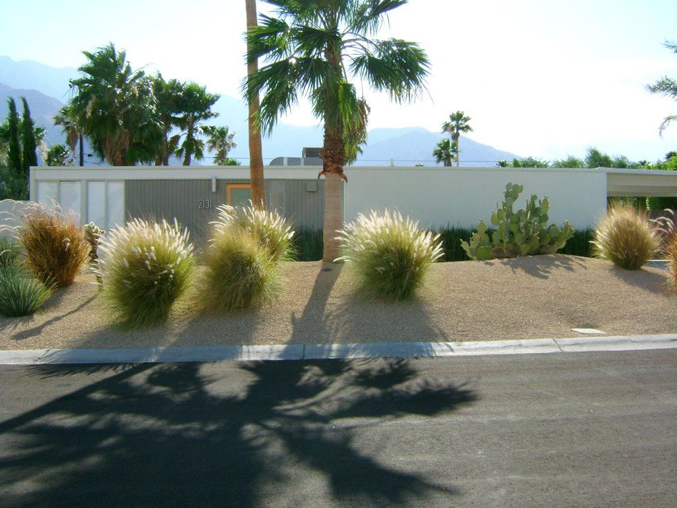 Mid Century Modern Homes Landscaping xeriscaping ideas for the front and back yards of a mid century