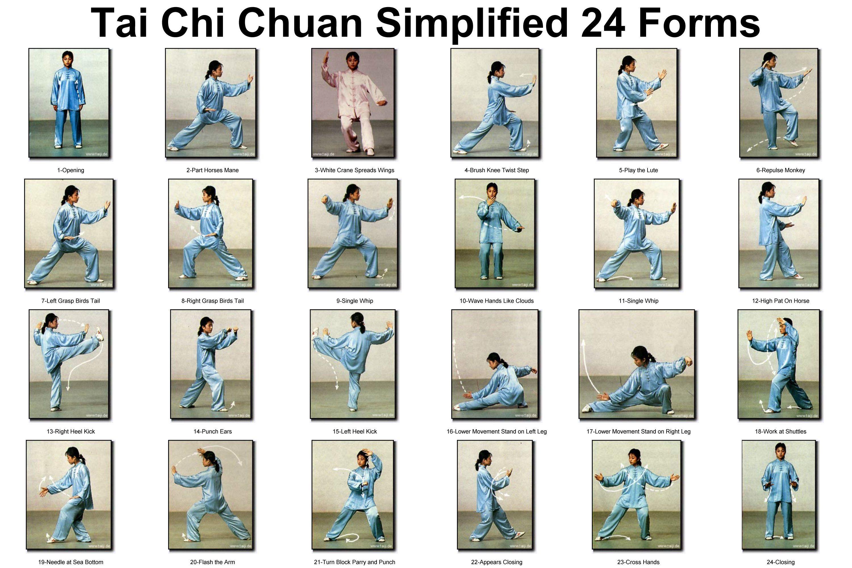 tai chi exercises 24 forms chart | TaiJiQuan 24Forms | Pinterest ...
