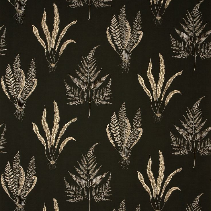 Sanderson - Woodland ferns