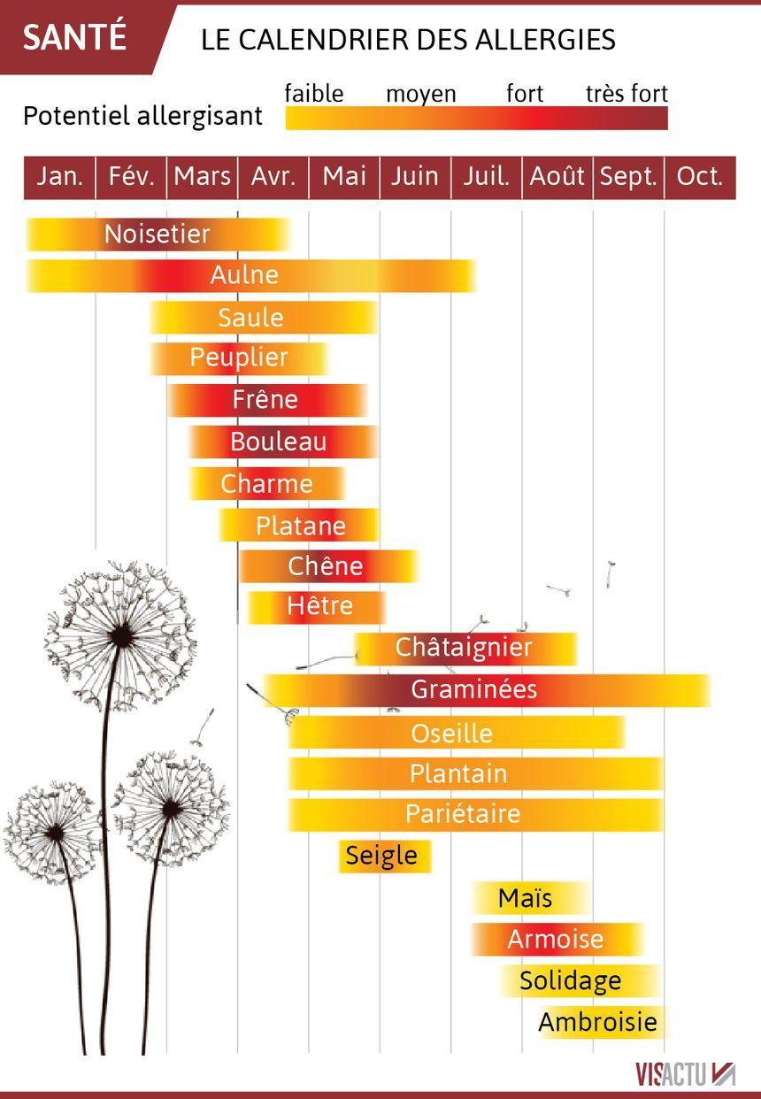 Carte Allergies Les Pollens Sont Deja De Retour Sept Departements En Risque Rouge En 2020 Le Pollen Allergies Info Sante