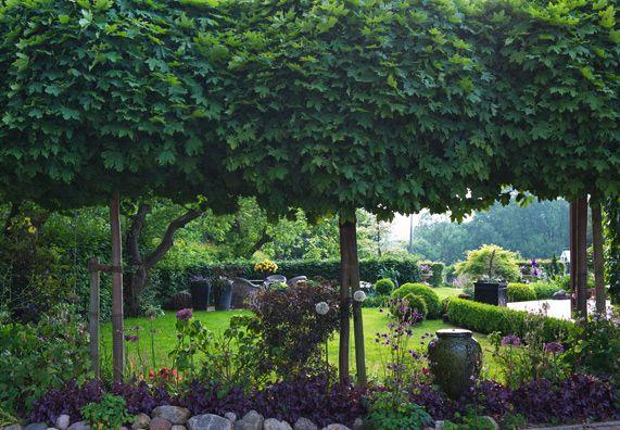 Tipps zur gestaltung eines landhausgartens obi ratgeber for Gestaltung eines gartens