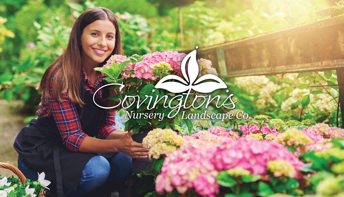 Home Covingtons Nursery Rowlett, Texas Nursery