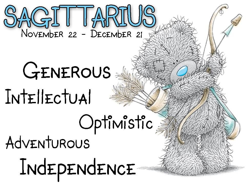 ʕ •́؈•̀ ₎♥                                                            Star sign: November 22-December 21