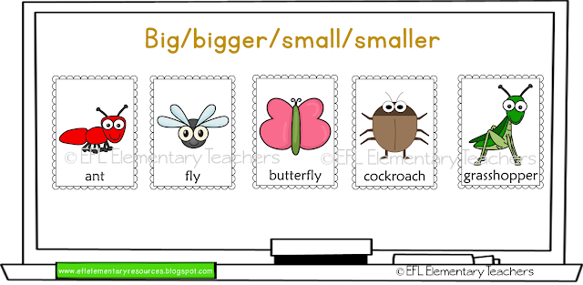 Insects Unit For Elementary Esl Insect Unit Printable Flash