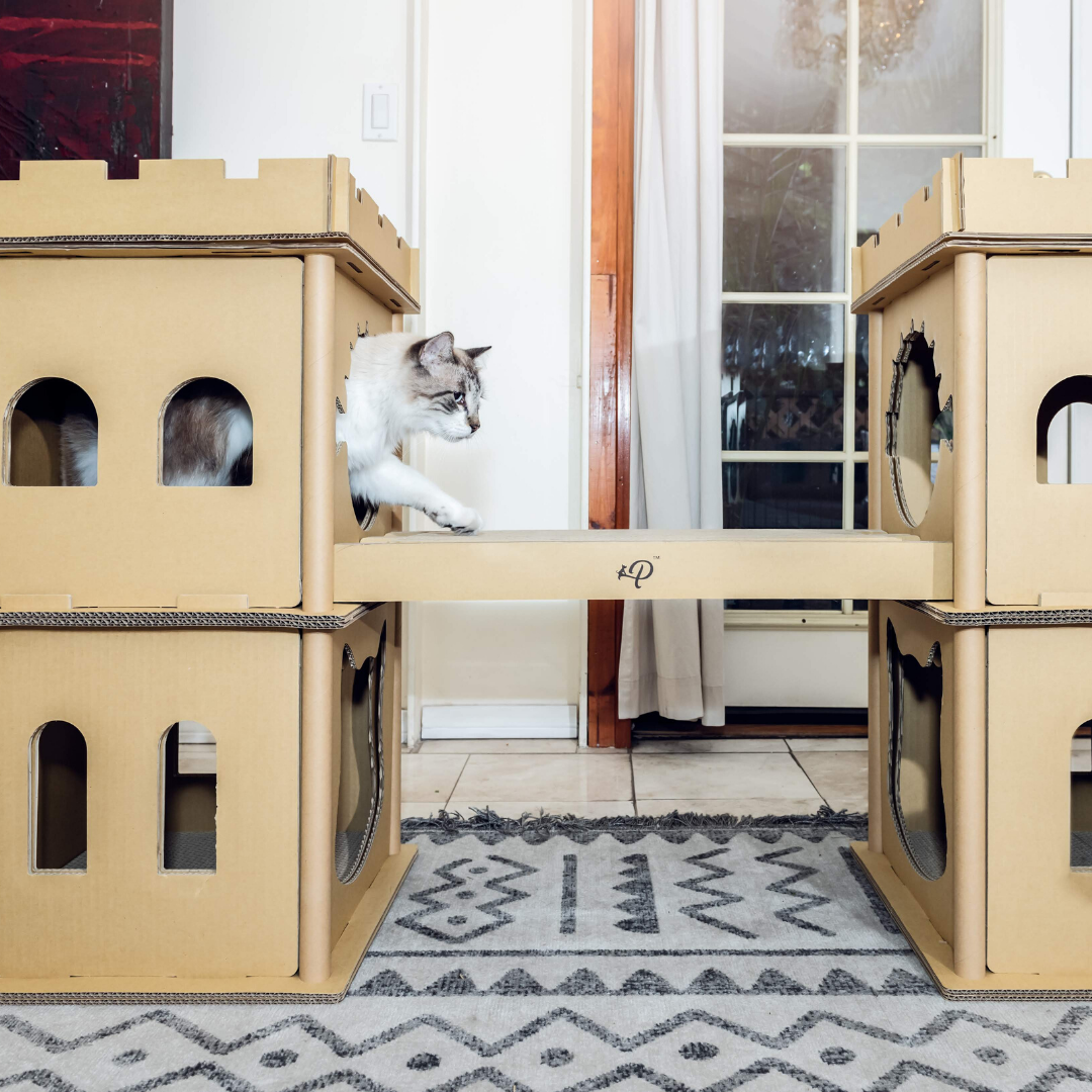 London Bridge Cat House Cat House Diy Cardboard Cardboard Cat House Cat House Diy