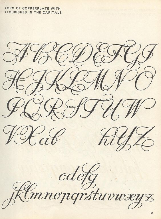 Vintage Script Alphabet Lettering 1957 M Meijer Form Of Copperplate With Flourishes In The Capitals