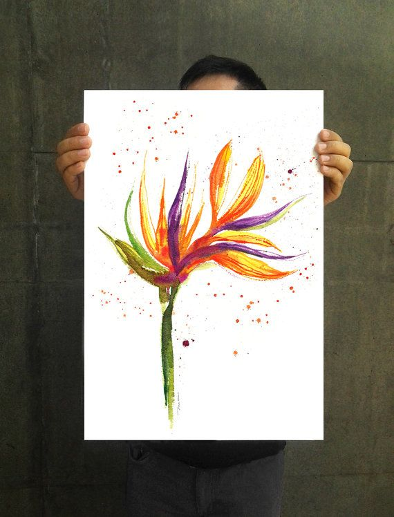 Bird Of Paradise Flower 2 Floral Watercolor Painting By Colorzen 35 00 Wie Man Blumen Malt Wasserfarbenblumen Aquarell