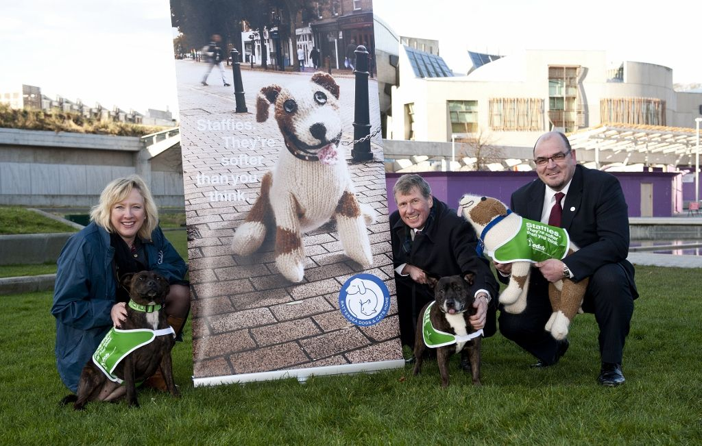 Our Staffie campaign has gone to Scotland as we have