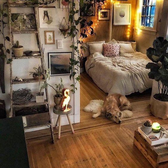 33 Cozy Dorm Room Decor Ideas - Elevatedroom