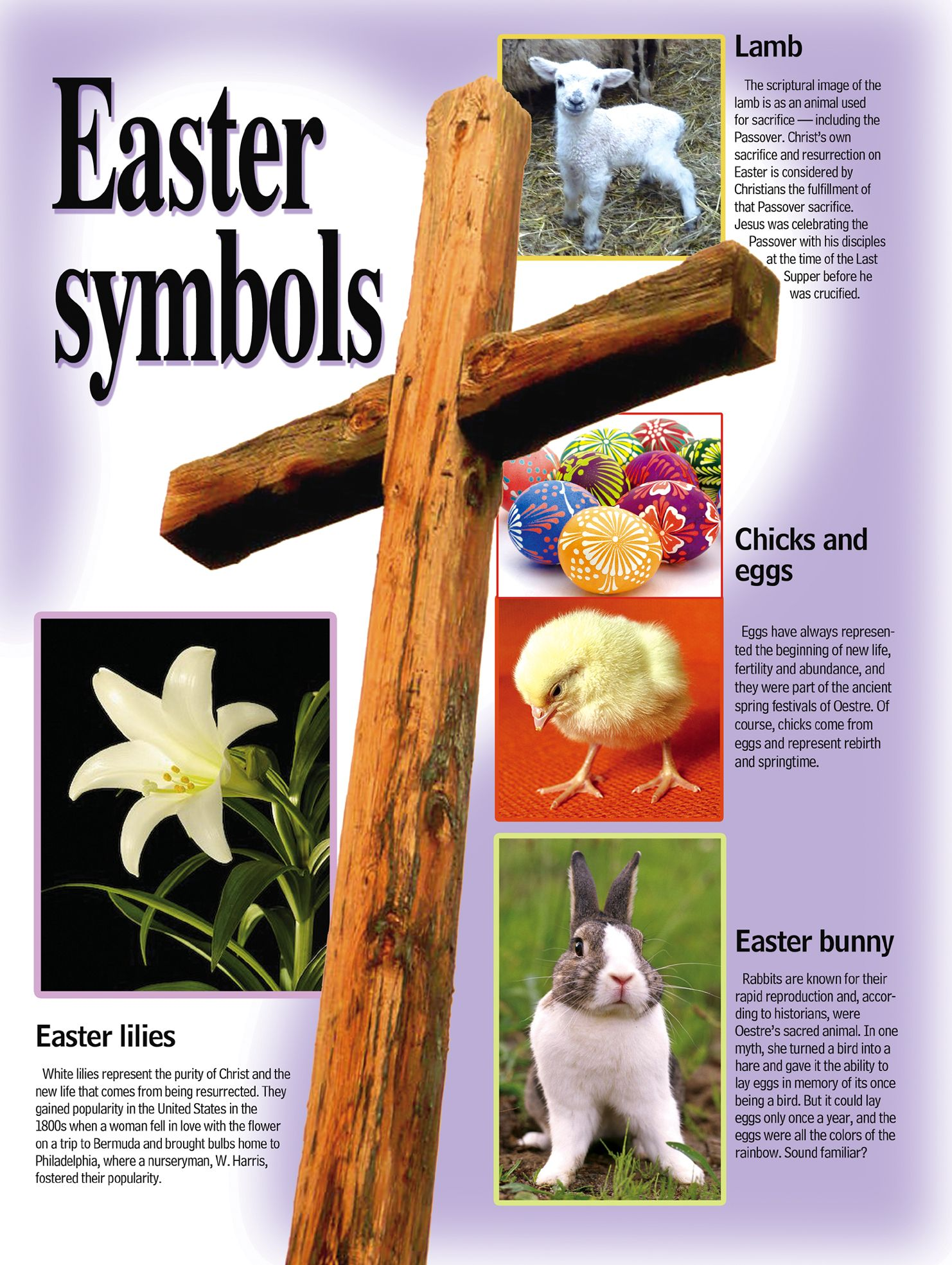 Pagan Easter Traditions Easter Symbols Bunny Eggs And More