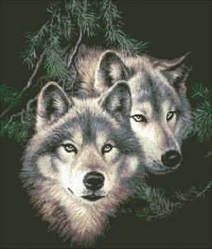 Два волка - Волки - Животные - Схемы в XSD - Кладовочка схем - вышивка крестиком