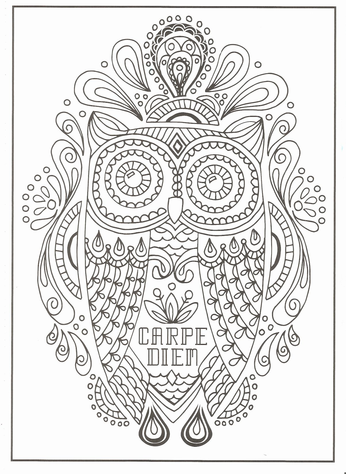 Timeless Creations Coloring Book Fresh Timeless Creations Creative Quotes Coloring Page Carpe Die Coloring Books Creation Coloring Pages Mandala Coloring Books