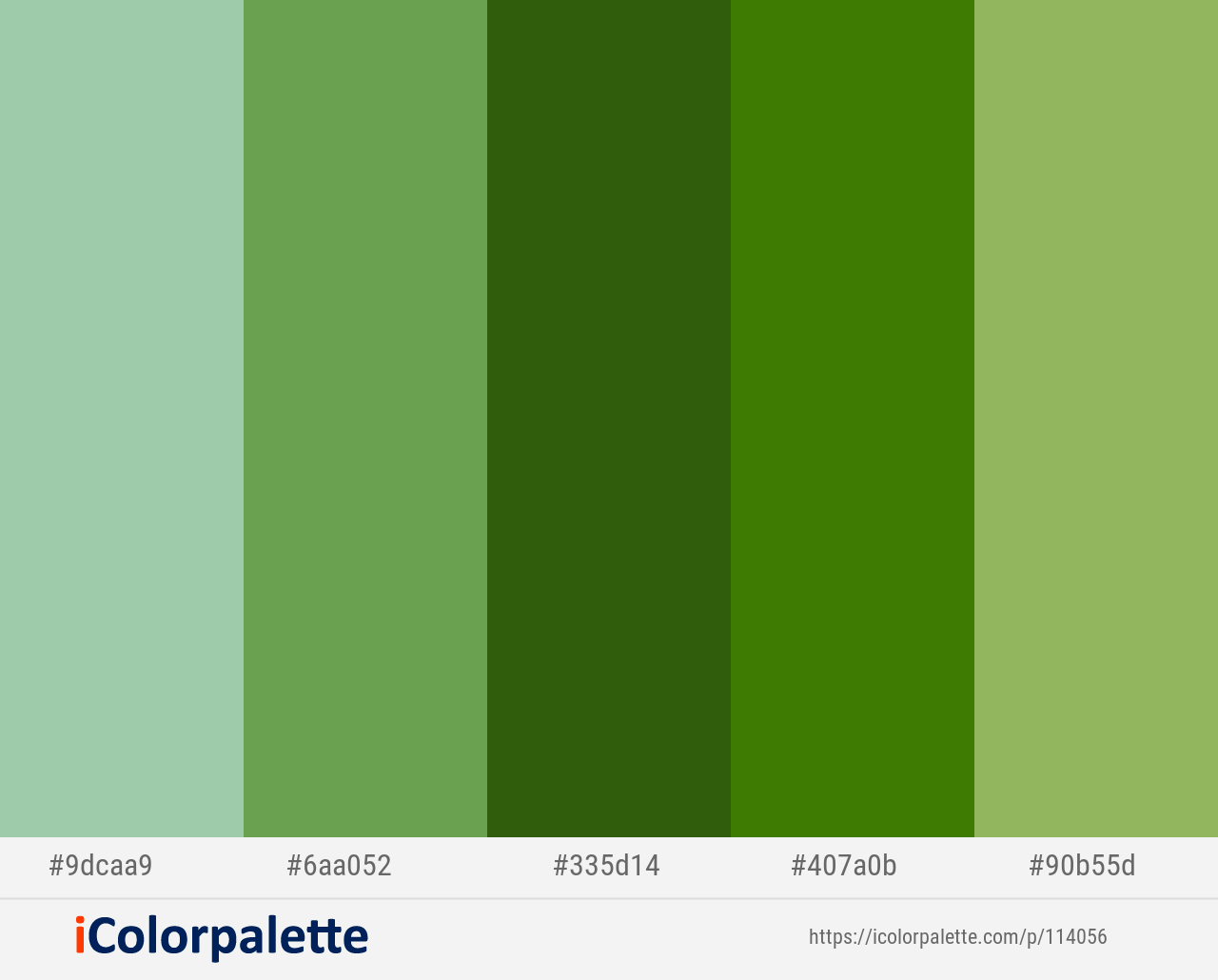 Green Colour Palette Color Palettes Colors Asparagus Dark Khaki
