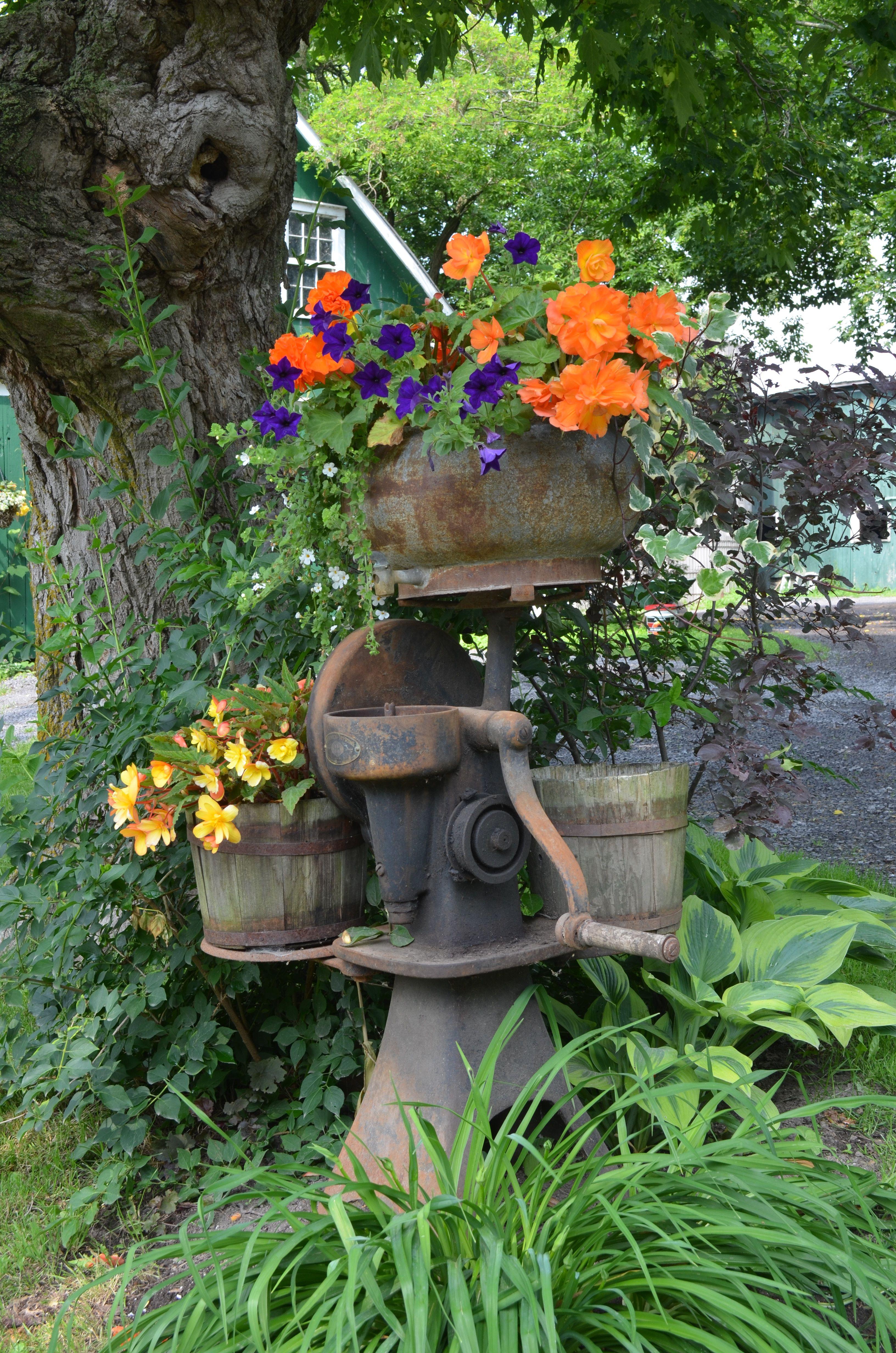 Old cream separator turned into a planter gardening for Garden separator