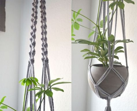 diy macrame blumenampel mit betontopf blumenampel makramee pinterest. Black Bedroom Furniture Sets. Home Design Ideas