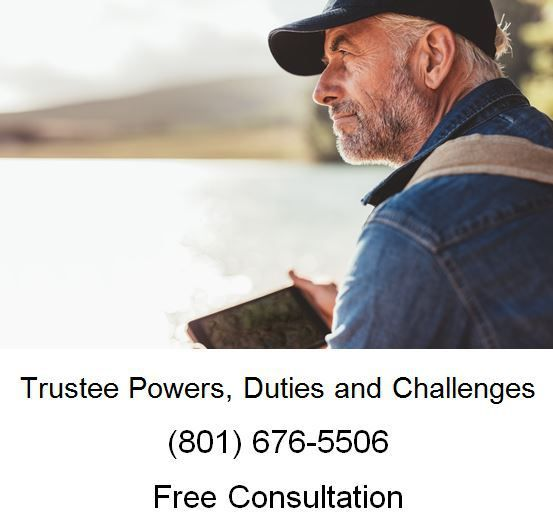 Trustee Powers Duties And Challenges Divorce Lawyers Family Law Attorney Divorce Attorney