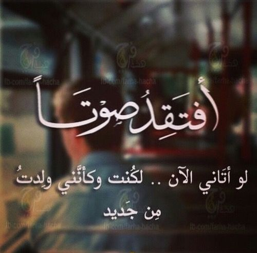 صوتك انت وحدك يا صاحب الظل A A New Words Words Of Wisdom Arabic Words