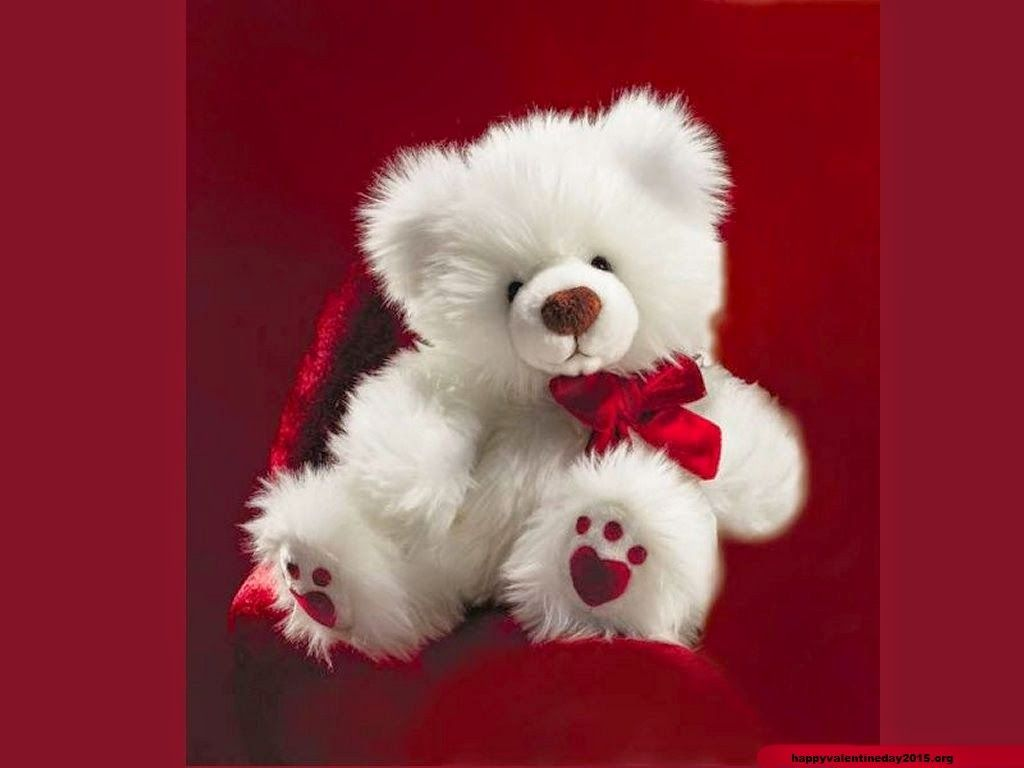happy teddy day 2015 teddy bear quotes and hd images happy