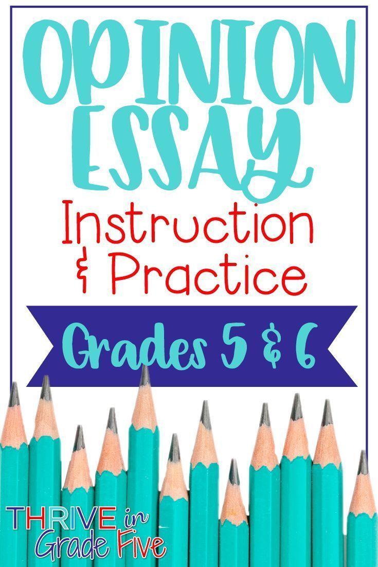 Opinion essay writing help
