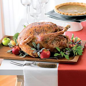 Cooking Turkey Overnight America S Test Kitchen