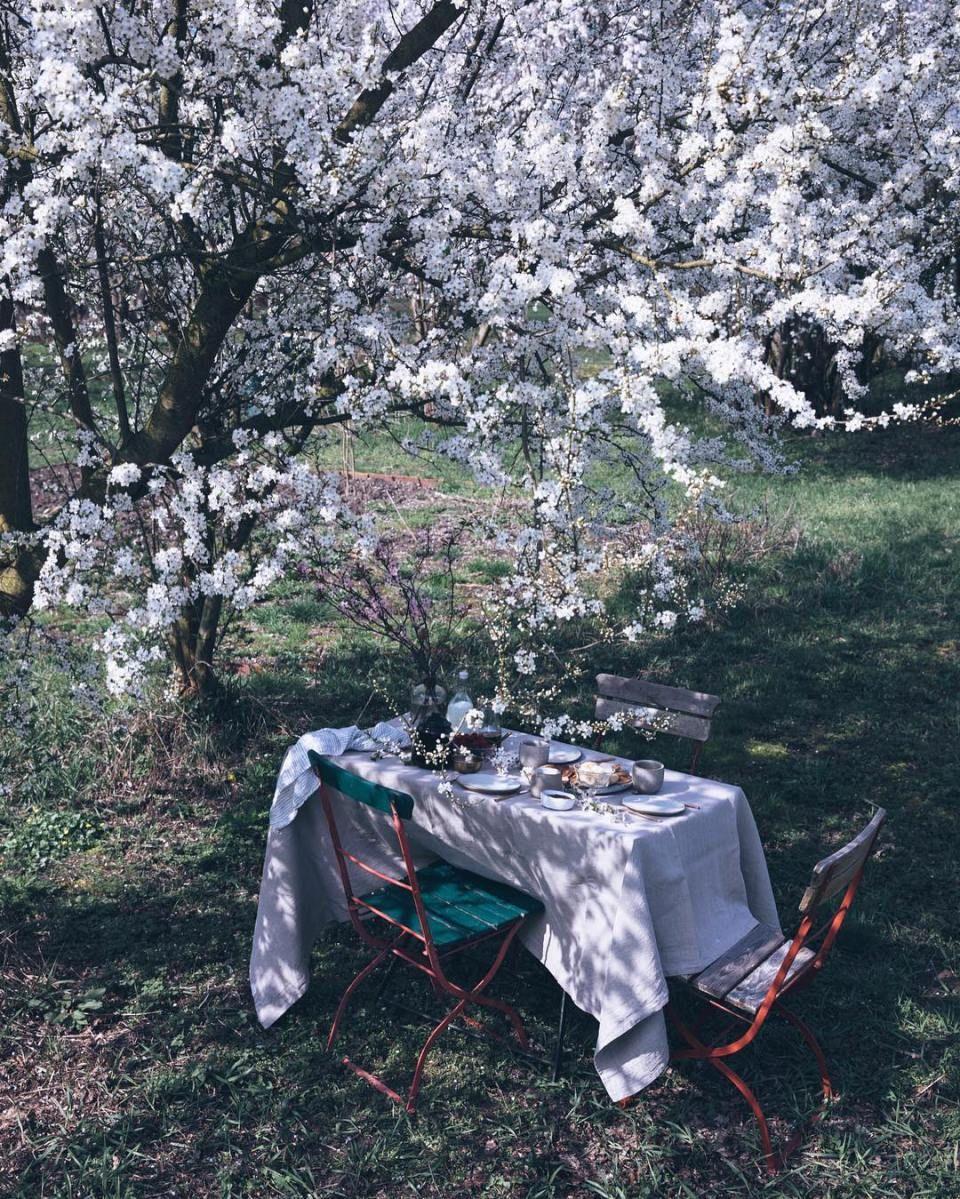 Une semaine sur Pinterest 52 Idées jardin, Repas