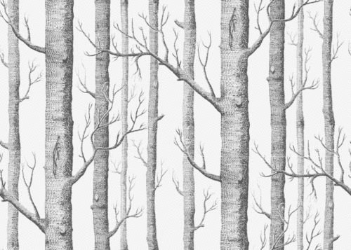 Árbol Ramas Bosque | pattern | Pinterest | Ramas y Bosques