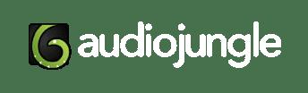 12+ Audiojung information