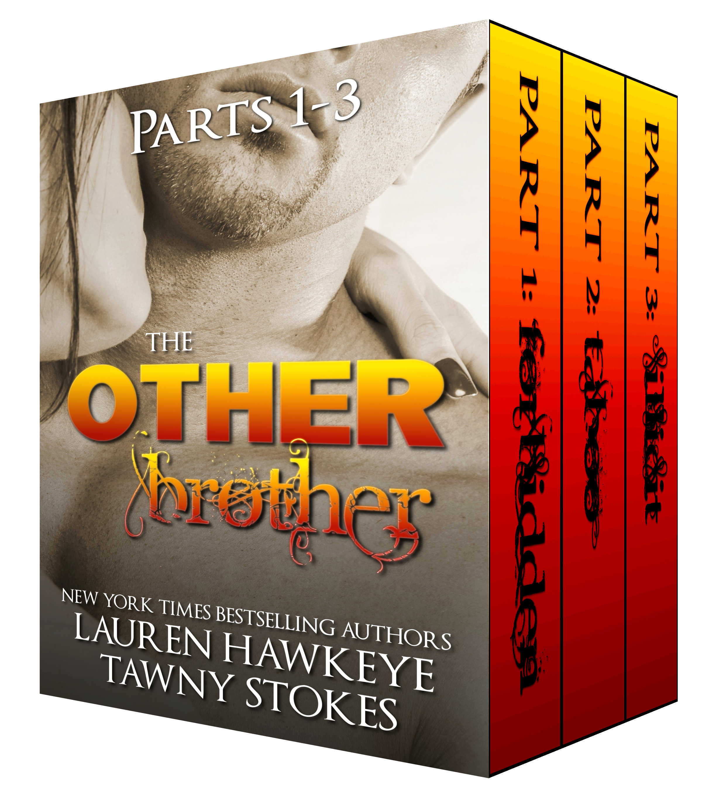 The Other Brother by Tawny Stokes and Lauren Hawkeye
