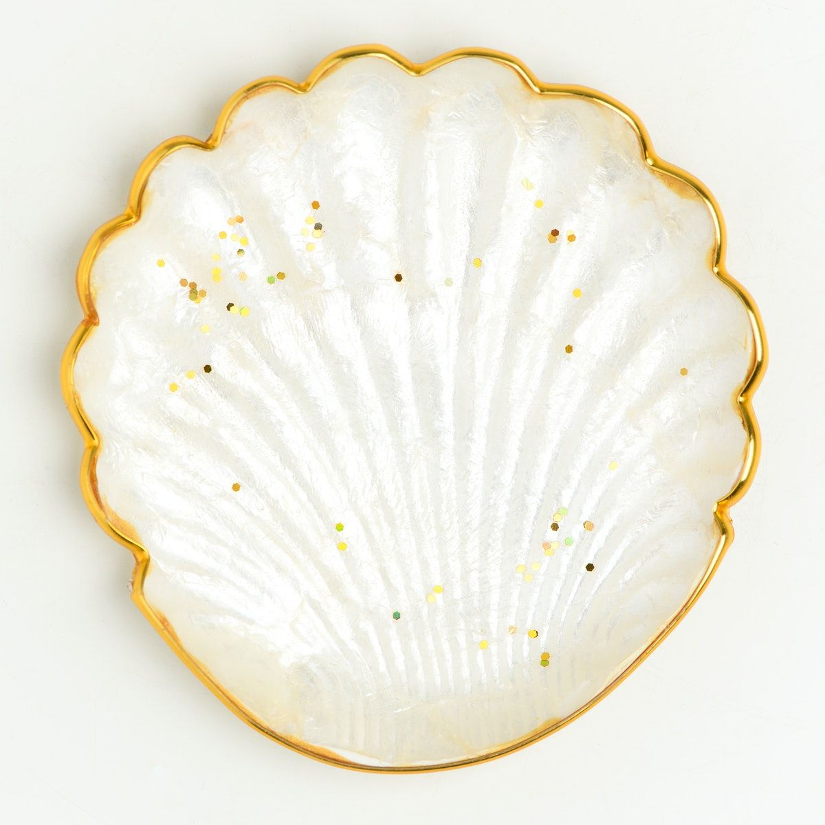 20++ White shell ideas