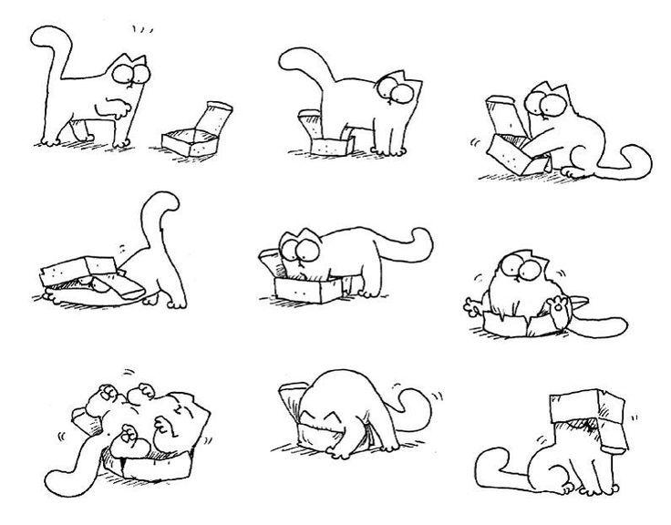Картинки карандашом прикольные кота, днем рождения
