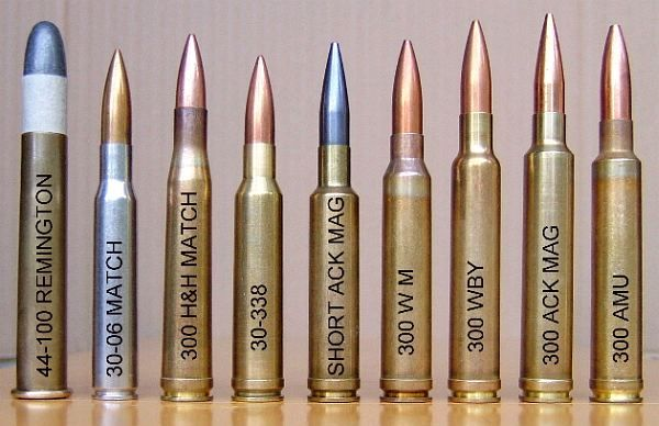 DIFFERENT CALIBER BULLETS/CARTRIGES | Long-Range and 1000