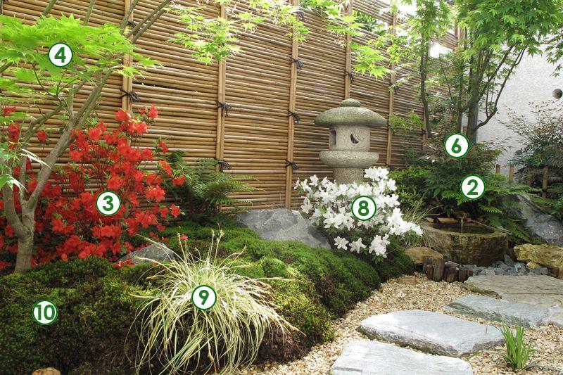 Un Decor Japonais Dans Un Petit Jardin A L Ombre Jardin Japonais Jardins Jardin Zen