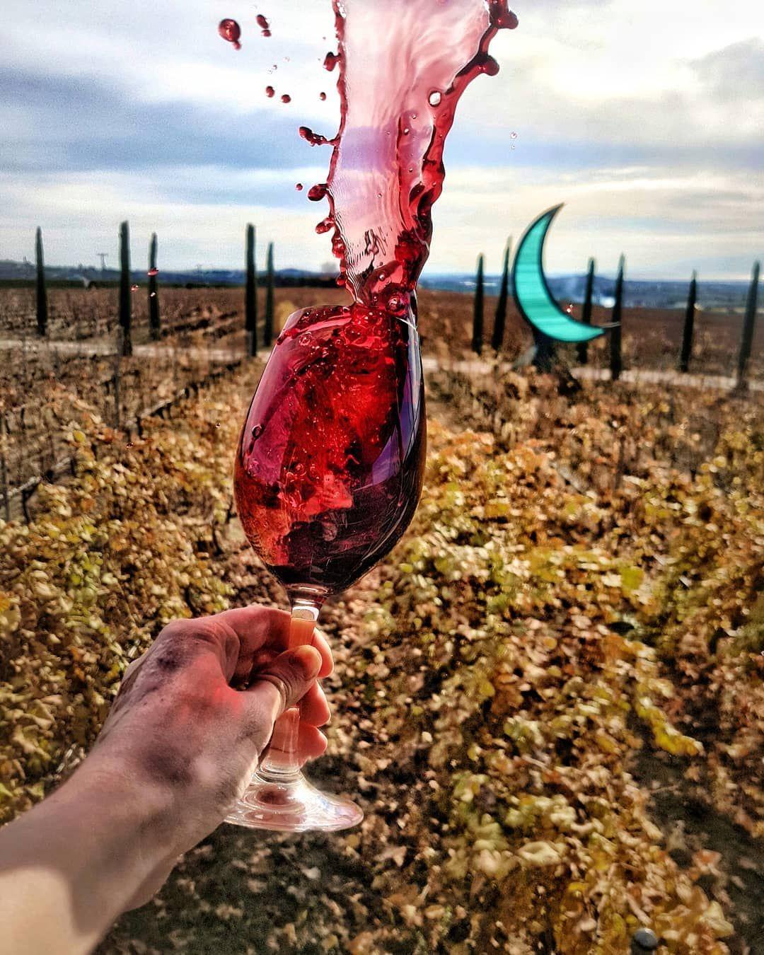 Swirling Wine In The Greek Vineyards Lapassionduvin Wineswirls Wine Gini Wine Photography Wine Rioja